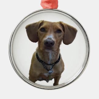 Hundezeichnung Silbernes Ornament