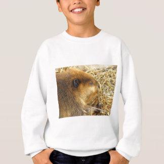 Hungriger Biber Sweatshirt
