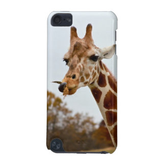 Hungriges Giraffen-wilde Tier-Foto iPod Touch 5G Hülle