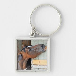 Hungriges Pferd Schlüsselanhänger