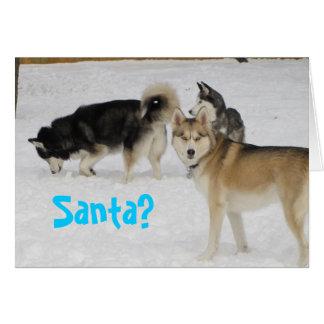 Husky-Feiertags-Weihnachtskarte Grußkarte