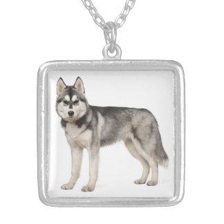 Husky-Hündchen-Halsketten-Anhänger Versilberte Kette