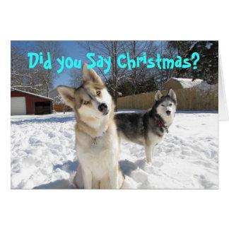 Husky-Weihnachtskarte Karte