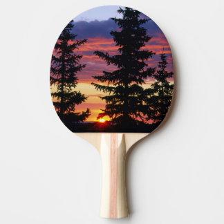 HUSTON PARK-WILDNIS, WYOMING. USA. Fichte Tischtennis Schläger