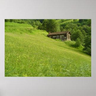 Hütte im Grün Plakate