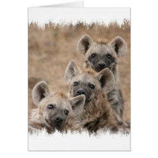 Hyänen-Gruß-Karte Karte