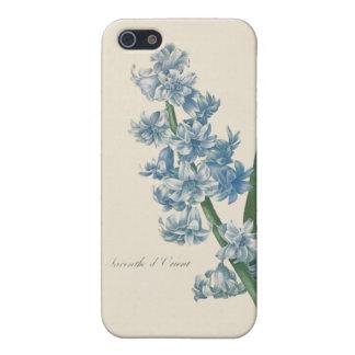 Hyazinthen-blaue Blumen-Illustration iPhone 5 Case