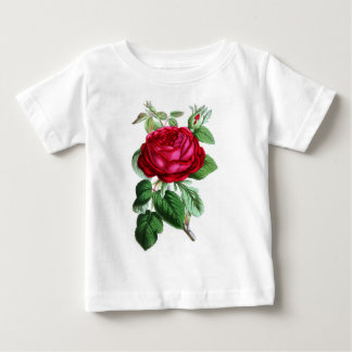 Hybride unaufhörliche Rose, Lord Napier Baby T-shirt