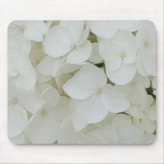 Hydrangea-Blumen-weiße elegante mit Blumenblüte Mousepad