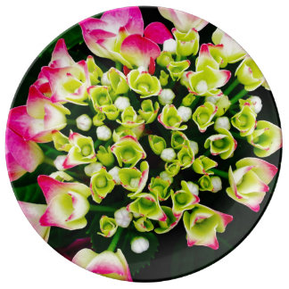 Hydrangea-Inspiration Porzellanteller
