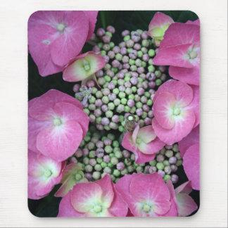 Hydrangea-Knospe Mousepad