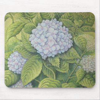 Hydrangeas bei Lanhydrock im Pastell Mousepad