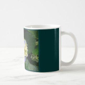 Hydrangeas, Hydranyeas Kaffeetasse