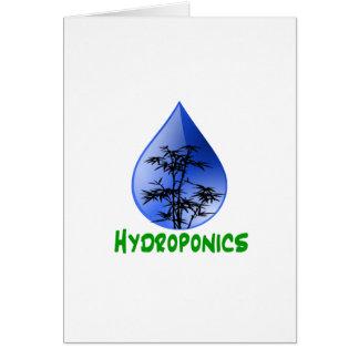 Hydroponik-schwarzer Bambus-Pflanzen-Grün-Text Karte