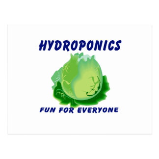 Hydroponik-Spaß für jeder Kopfsalat-Entwurf Postkarte