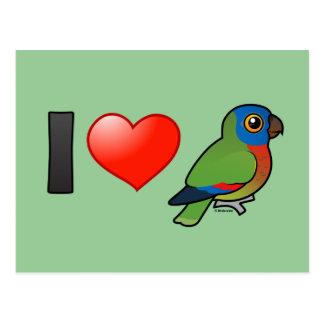 I Liebe-Heilige Lucia-Papageien Postkarte