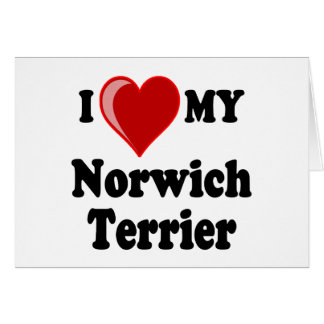 I Liebe (Herz) mein Norwich-Terrier-Hund Karte