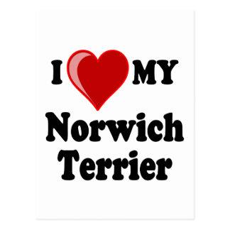 I Liebe (Herz) mein Norwich-Terrier-Hund Postkarte