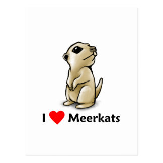 I Liebe Meerkats Postkarte