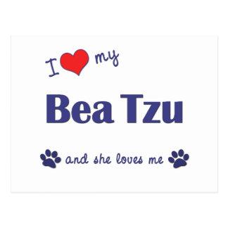 I Liebe mein Bea Tzu (weiblicher Hund) Postkarte