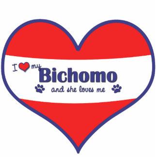 I Liebe mein Bichomo (weiblicher Hund) Acryl Ausschnitt