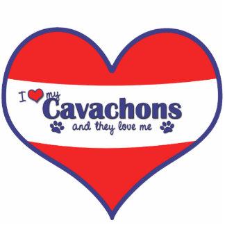 I Liebe mein Cavachons (mehrfache Hunde) Fotoskulptur Ornament