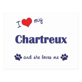 I Liebe mein Chartreux (weibliche Katze) Postkarte