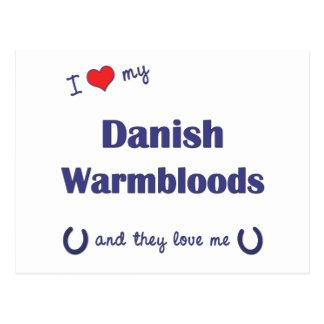 I Liebe mein dänisches Warmbloods (mehrfache Postkarte