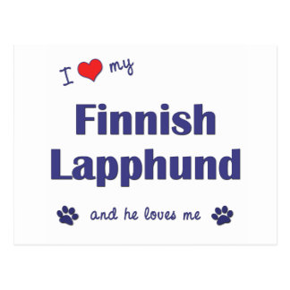 I Liebe mein finnisches Lapphund (männlicher Hund) Postkarte