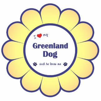 I Liebe mein Grönland-Hund (männlicher Hund) Fotoausschnitt