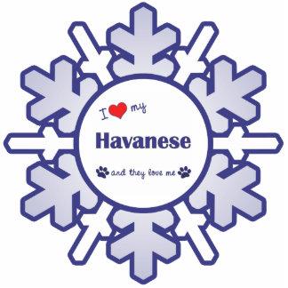 I Liebe mein Havanese (mehrfache Hunde) Photo Statue