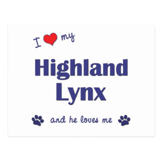 I Liebe mein Hochland-Luchs (männliche Katze) Postkarte