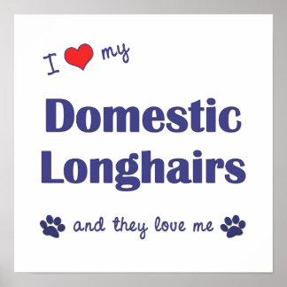 I Liebe mein inländisches Longhairs (mehrfache Kat Plakate
