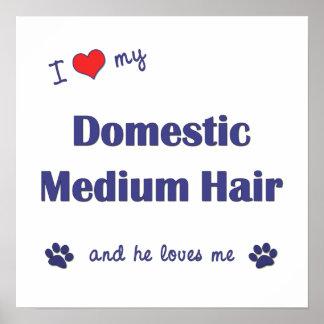 I Liebe mein inländisches mittleres Haar (männlich Plakatdrucke