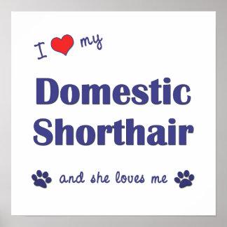 I Liebe mein inländisches Shorthair (weibliche Kat Plakat