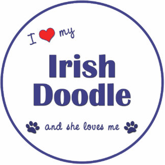 I Liebe mein irisches Gekritzel (weiblicher Hund) Foto Figuren