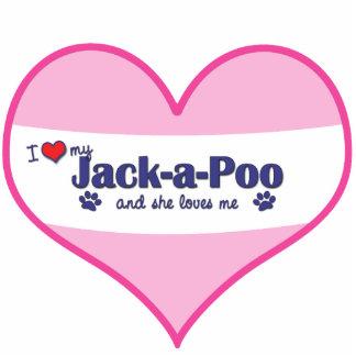 I Liebe mein Jack-ein-Poo (weiblicher Hund) Foto Ausschnitt