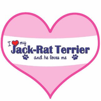 I Liebe mein Jack-Ratte Terrier (männlicher Hund) Fotostatue