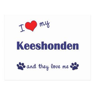I Liebe mein Keeshonden (mehrfache Hunde) Postkarte