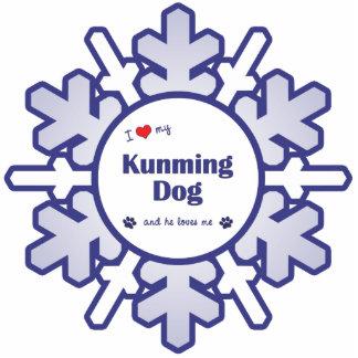 I Liebe mein Kunming-Hund (männlicher Hund) Foto Figur