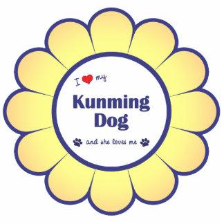 I Liebe mein Kunming-Hund (weiblicher Hund) Foto Figuren