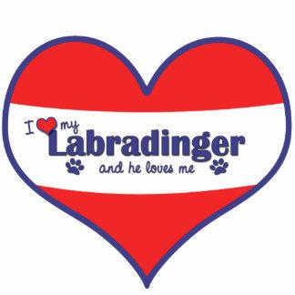 I Liebe mein Labradinger (männlicher Hund) Foto Ausschnitt