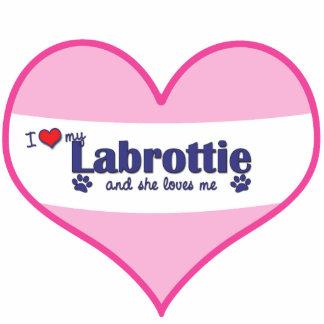 I Liebe mein Labrottie (weiblicher Hund) Photostatuen