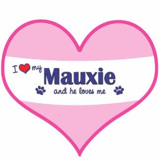 I Liebe mein Mauxie (männlicher Hund) Photostatuen