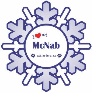 I Liebe mein McNab (männlicher Hund) Photoausschnitte