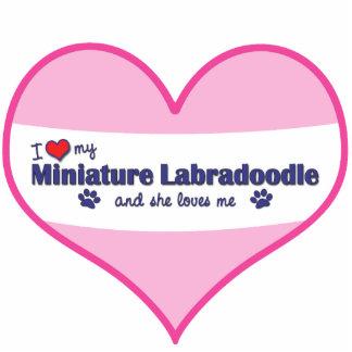 I Liebe mein MiniaturLabradoodle (weiblicher Hund) Photo Skulptur