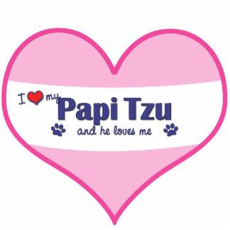I Liebe mein Papi Tzu (männlicher Hund) Fotoskulptur Ornament