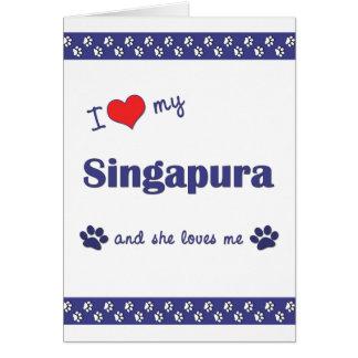 I Liebe mein Singapura (weibliche Katze) Karte
