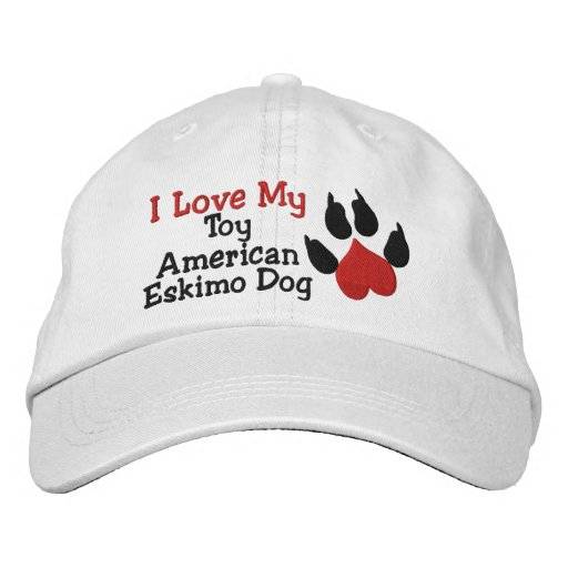 I Liebe mein Spielzeug-amerikanischer Bestickte Kappe
