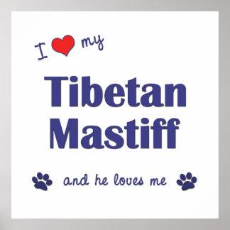 I Liebe mein tibetanischer Mastiff männlicher Hun Plakat